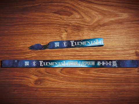 PDV, pulseira vip, ingresso para festival o despertar Elemental