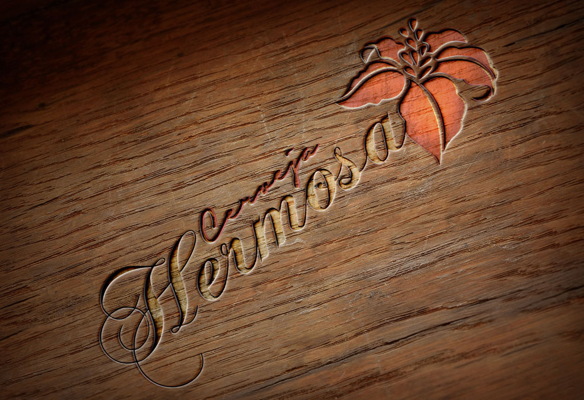 Logotipo, criação de logotipo, naming, identidade visual, branding